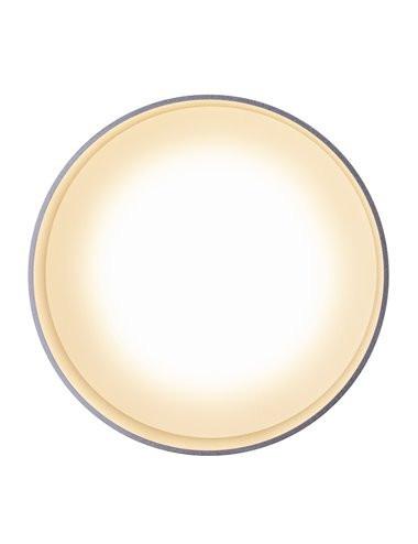 Plafoniera argintie 6W Globo 12016N