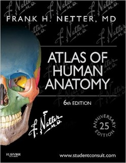 Slika Atlas of Human Anatomy  Student Consult Interactive 6th Edition Frank H. Netter