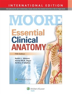 Slika Essential Clinical Anatomy Keith L. Moore