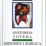 Anatomija čoveka: abdomen i karlica