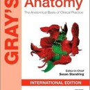 Greys Anatomy International Edition 2015