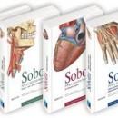 Sobotta Anatomski Atlas 3. Knjige Najnovije Izdanje 15Ed