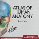 Atlas of Human Anatomy Frank H Netter Engleska vezija 2015 god