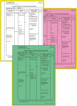 Formular de incarcare-descarcare deseuri nepericuloase, A4, 3ex., alb-negru, personalizat