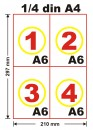 Carnet control medical periodic, A6