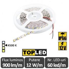 Bandă LED flexibilă - SMD5050 12W/m 12V IP66 rolă 5m alb-neutru