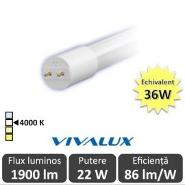 Tub LED Vivalux Royal LED 22W T8 1200mm 4000K alb-neutru
