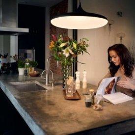 Philips -Corp suspendat Cher Hue 1x39W