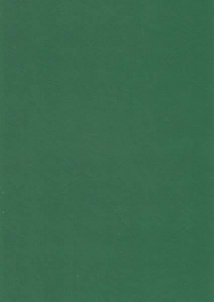 Donkergroen karton lederlook, A4, 412747 (Locatie: 6440)