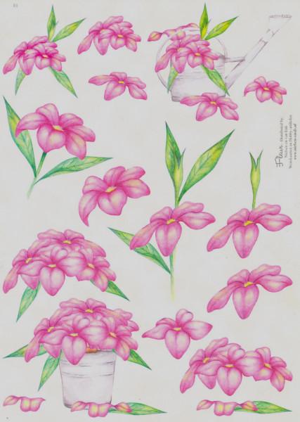 Fleur knipvel bloemen E1 (Locatie: 5505)