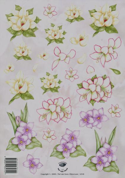 Tierelantijntje knipvel bloemen 2318 (Locatie: 355)