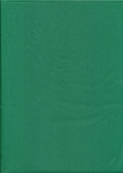 Tissuepapier groen 50 x 70 cm per vel