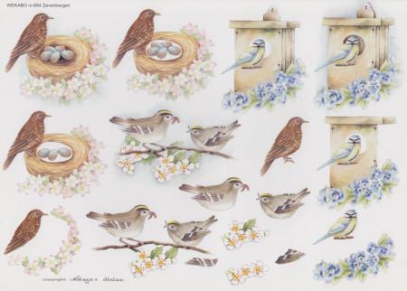 Wekabo vogels 684 (Locatie: 2608)