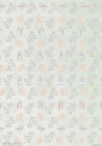 Achtergrondvel Peter Rabbit BASISPOT05 (Locatie: 1441)