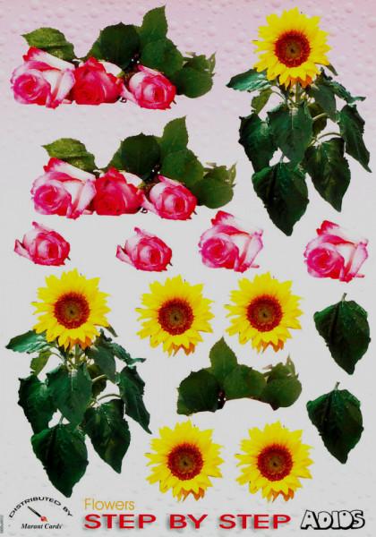 Adios knipvel bloemen SBSu0012 (Locatie: 5505)