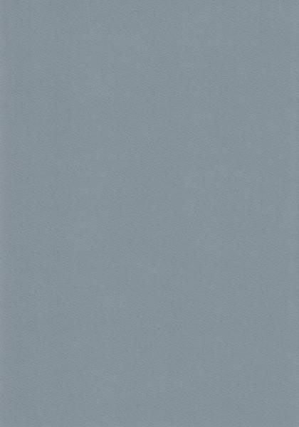 Grijs karton, 220 gr, A4 (Locatie: 4635)