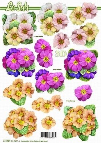 Le Suh knipvel bloemen 777421 (Locatie: 6662)
