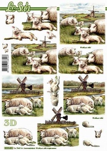 Le Suh knipvel schapen 8215651 (Locatie: 2919)