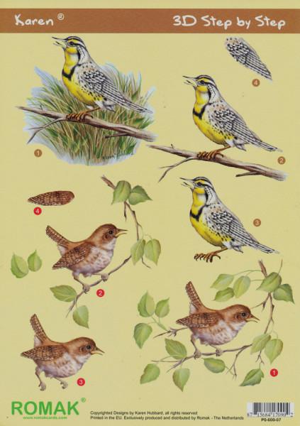 Romak knipvel vogels P0-600-07 (Locatie: 0812)