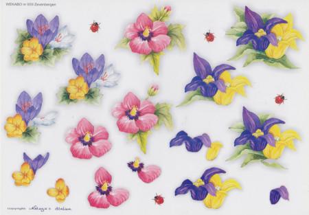Wekabo knipvel bloemen 659 (Locatie: 1507)