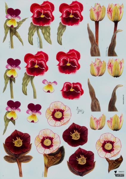 Wekon knipvel bloemen W80373 (Locatie: 2221)