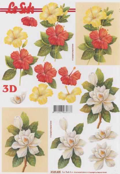 Le Suh knipvel bloemen 4169428 (Locatie: 1137)