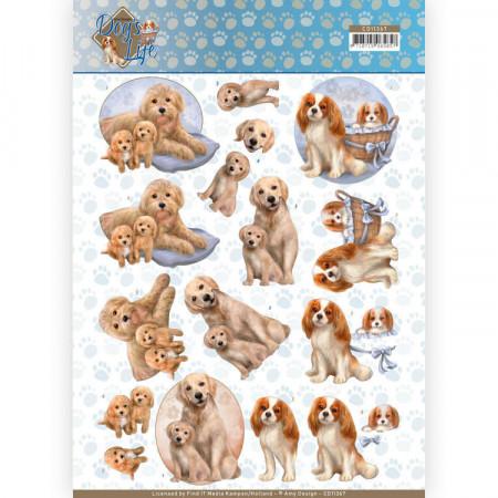 Amy Design knipvel honden CD11367 (Locatie: 1546)
