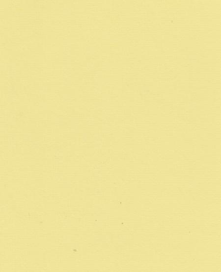 Papicolor karton met relief geel, A4 (Locatie: s1)