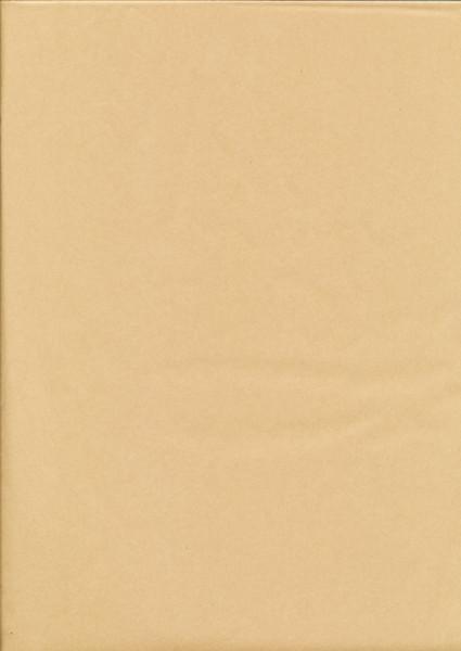 Tissuepapier lichtbruin 50 x 70 cm per vel