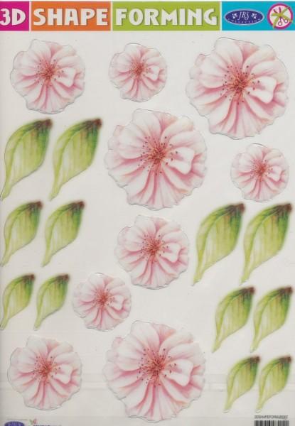 3D Shape Forming bloemen 3Dshapeforms62 (Locatie: 4430)