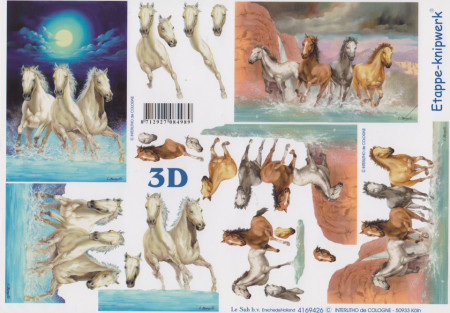 Le Suh knipvel paarden 4169426 (Locatie: 2658)