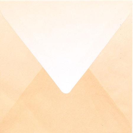 Regenboogenvelop lichtbruin 14x14 cm (Locatie: k3)