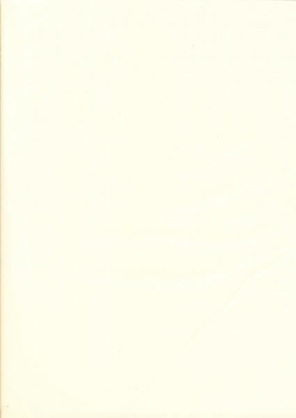 Tissuepapier babygeel 50 x 70 cm per vel
