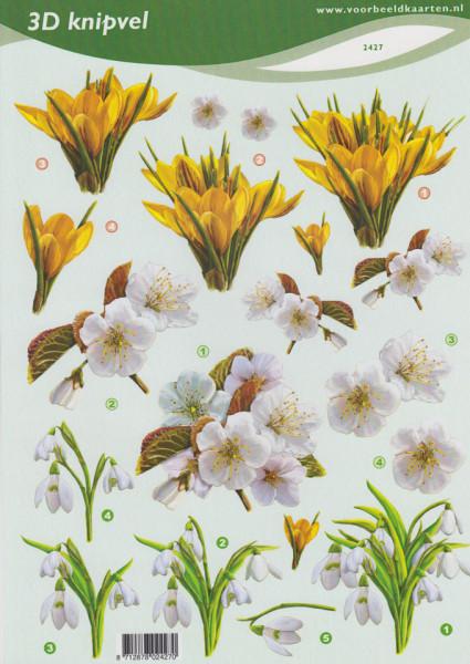 Voorbeeldkaarten knipvel bloemen 2427 (Locatie: 6447)