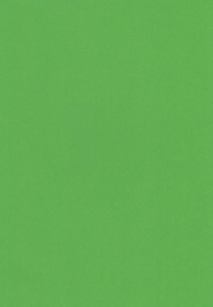 Hoca karton groen, A4, 700320 (Locatie: s1)