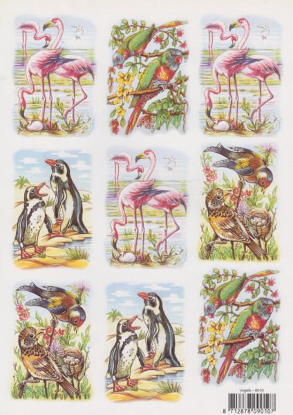 Knipvel vogels 9010 (Locatie: 1715)