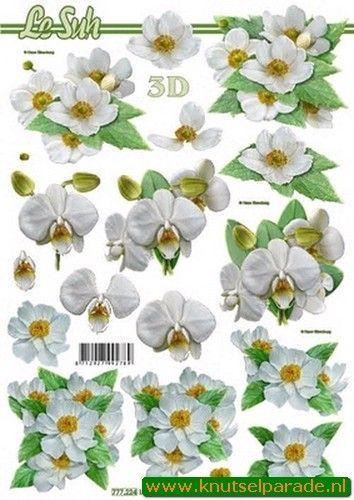 Le Suh knipvel bloemen 777224 (Locatie: 0334)