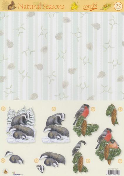 Studio Light bird Natural Seasons COMBINS29 (Locatie: 1724)