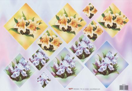 TBZ pyramide knipvel bloemen 202131 (Locatie: 0238)