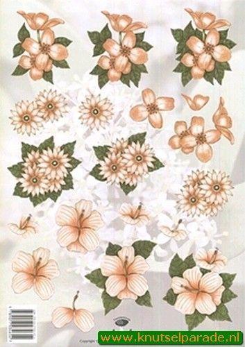 Tierelantijntje knipvel bloemen 2312 (Locatie: 4721)