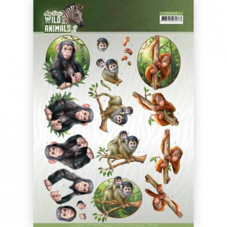 Amy Design knipvel apen CD11299 (Locatie: 1547)