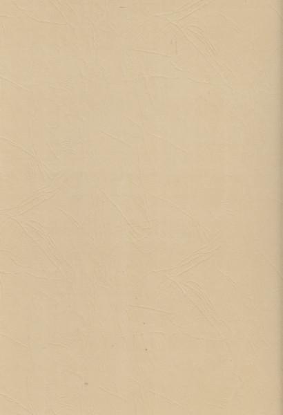 Lederlook karton beige A4 (Locatie: 2753)