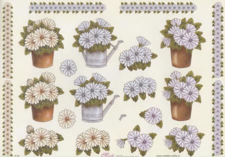 Mireille knipvel bloemen E142 (Locatie: 2865)