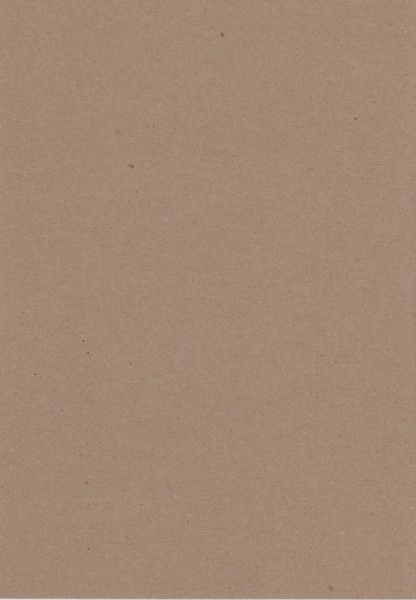 Naturel karton, 220 gr, A4 (Locatie: 0325)