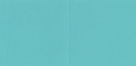 Vierkante kaart groen (Locatie: NN137 )