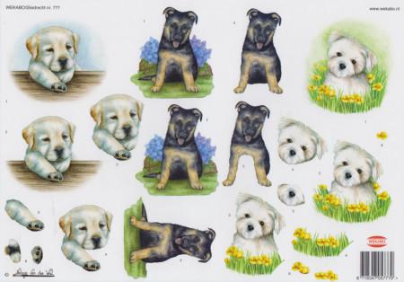 Wekabo knipvel honden 777 (Locatie: 2708)