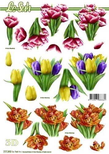 Le Suh knipvel bloemen 777392 (Locatie: 5530)