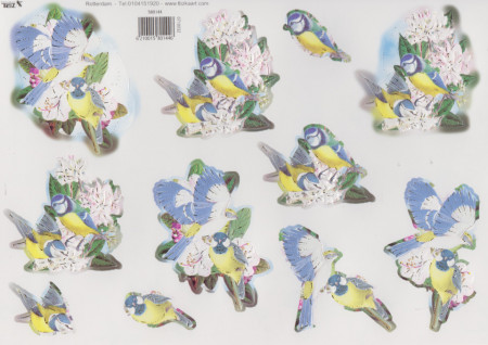 TBZ stansvel vogels nr. 580144 (Locatie: 4814)