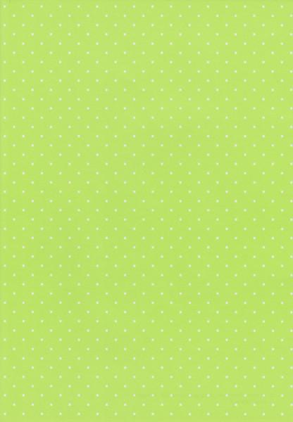Wekabo achtergrondpapier A4 lentegroen 256 (Locatie: 2758)