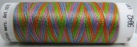 Amann Mettler Silk finish multi 100 meter 9842